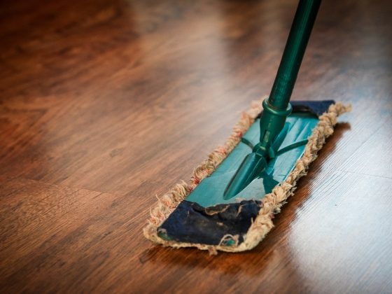 Cleaning Industry Statistics