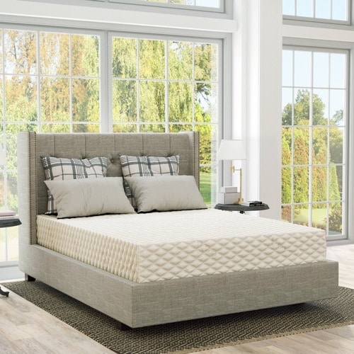 PlushBeds Reviews - Natural Bliss Mattress Review