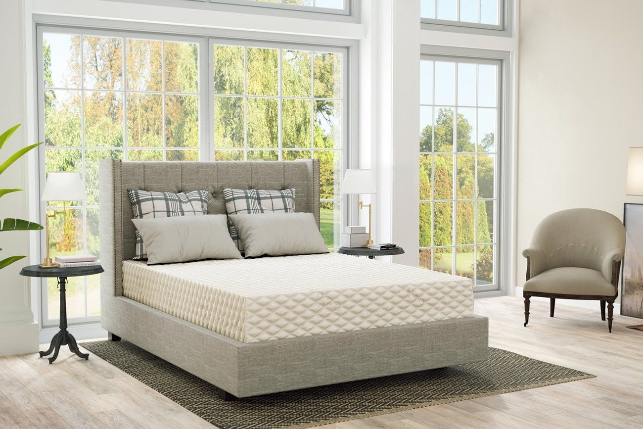 PlushBeds Reviews - Featured