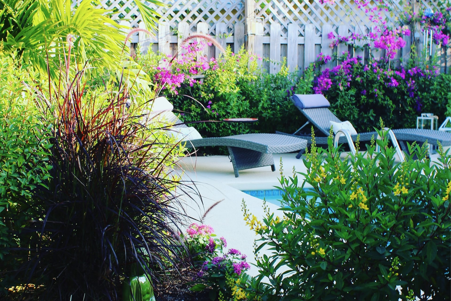 Backyard Ideas - Featured