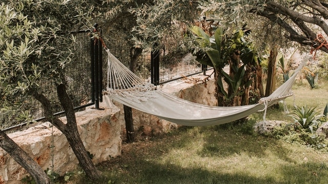 Backyard Ideas - Hammock