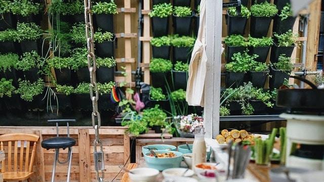 Herb Garden Ideas - Vertical Garden